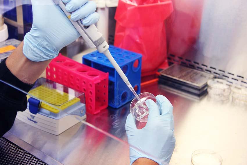 Анализы биоматериала
