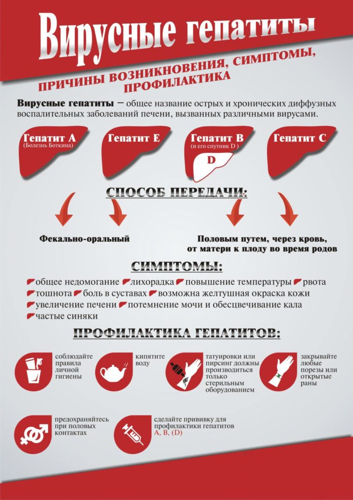 Вирусные гепатиты