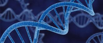 Генная мутация