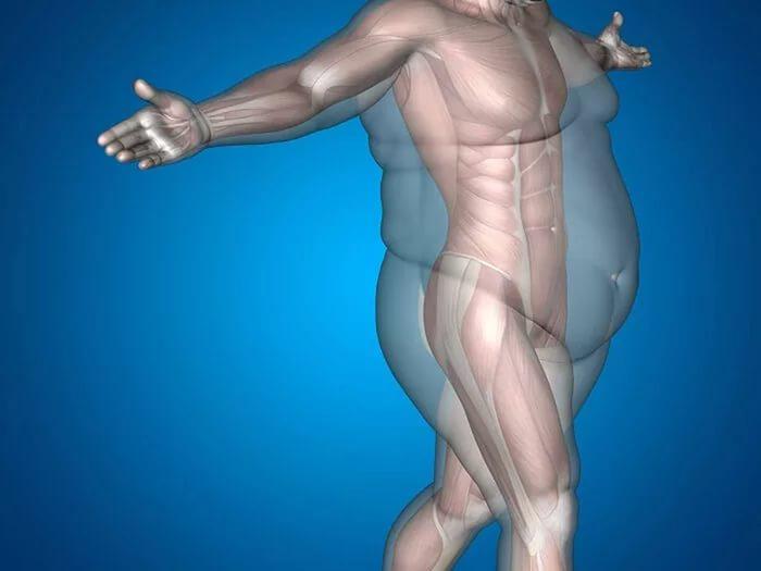 Нарушение эндокринной системы